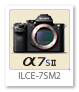 α7SII 「ILCE-7SM2」 フルサイズ Eマウント デジタル一眼カメラ