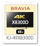 KJ-49X8300D