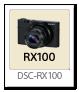 RX100 「DSC-RX100」
